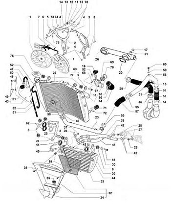 Honda Foreman 450 Part Diagram
