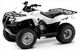 250 FOURTRAX 2009 TRX250TM9