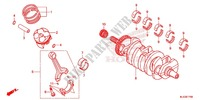 CRANKSHAFT/PISTON for Honda CBR 600 RR REPSOL 2013